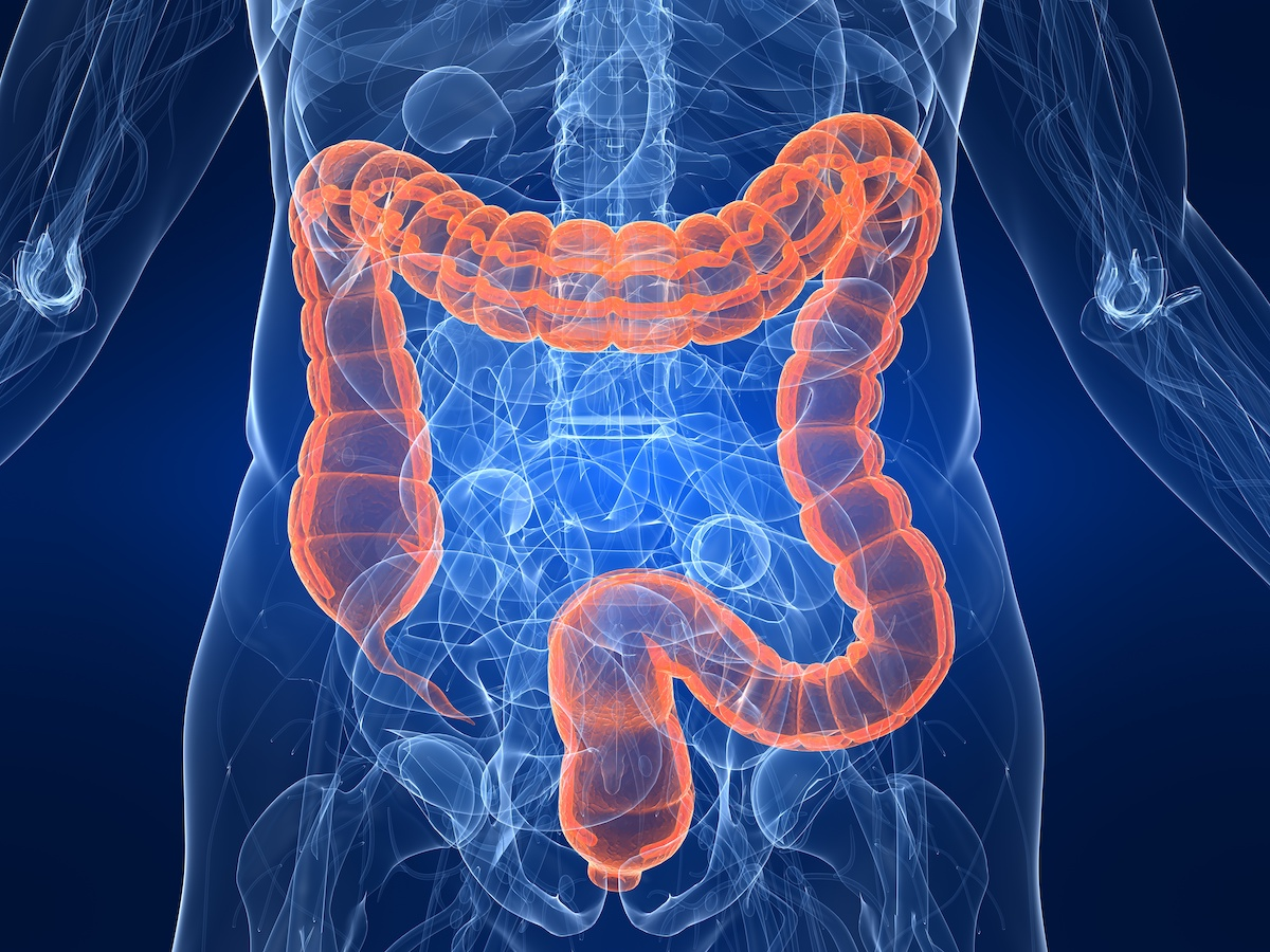 痩せ菌サプリのダイエット効果とは?腸内フローラダイエットを徹底解説